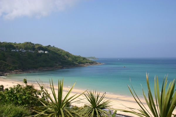 Cornwall Beaches It S A Dogs Life Beachlets