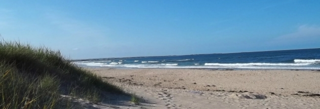 Northumberland Beach Cottages