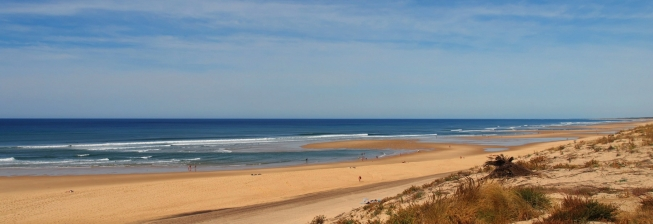 Beach Holiday Accommodation in Biscarrosse to Rent
