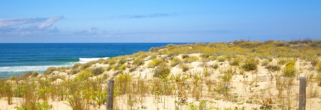 Beach Holiday Accommodation in Arcachon to Rent