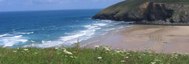 Pet Friendly Accommodation in Mawgan Porth to Rent