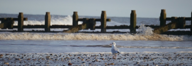 Beach Holiday Accommodation in Hornsea to Rent